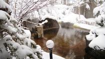*混浴大露天風呂「枯山水」 冬は雪見風呂に