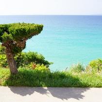 【部屋からの景色】  目の前は青い海♪キレイな海に癒されて下さい