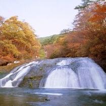 10月20日~11月上旬頃まで各お部屋、釜淵の滝で紅葉がお楽しみ頂けます。