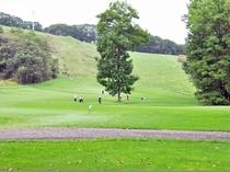 【パークゴルフ】広々としたエリアでパークゴルフをお楽しみください♪