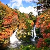 紅葉に染まる竜頭の滝
