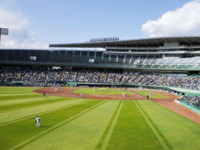 スカイマークスタジアム:内外野の天然芝が美しく、フィールドシートでの観戦は大迫力!