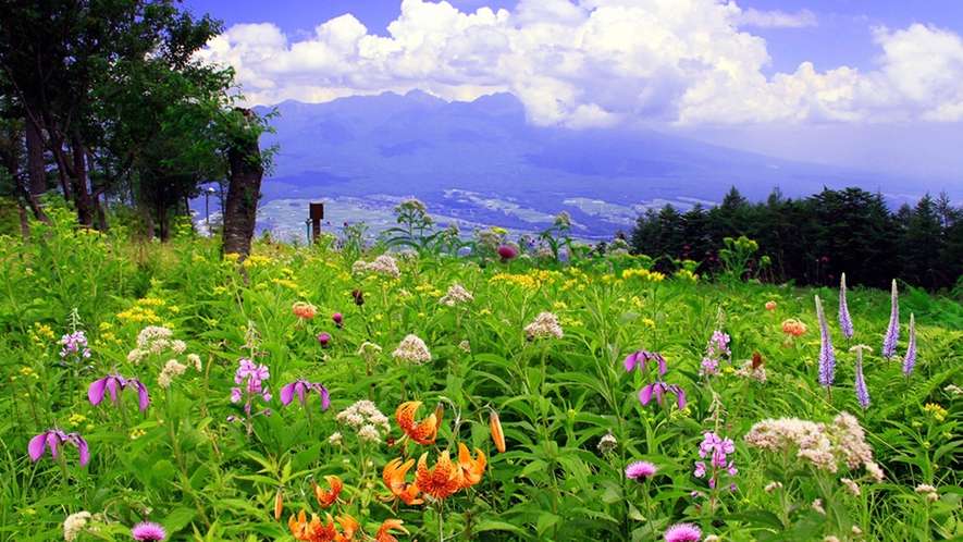 *富士見パノラマリゾート/富士山と八ヶ岳を望む高原リゾート。当館からお車で約40分。