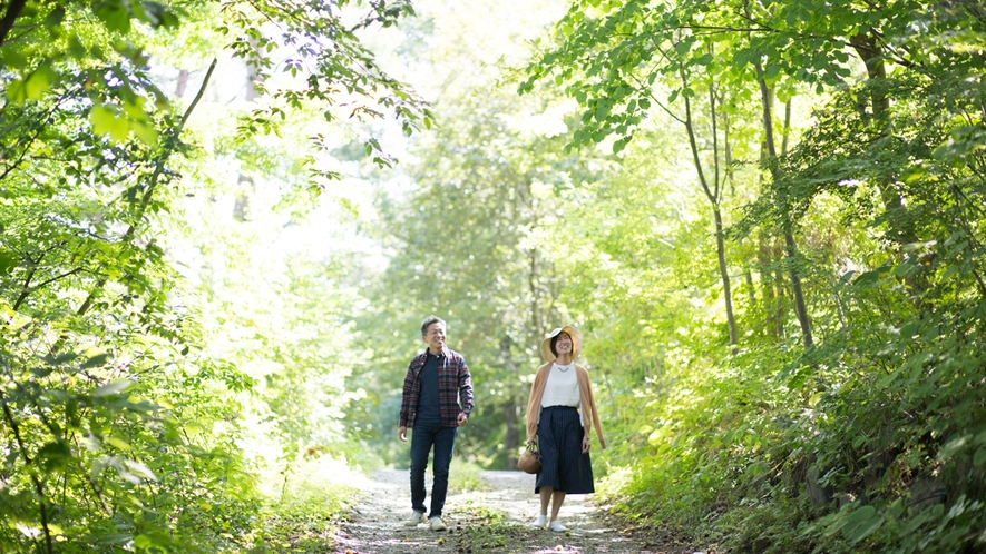 *敷地内/緑のトンネル。小道を散策するのもおすすめです。