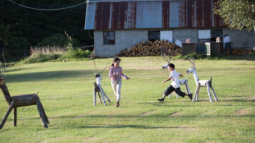 *敷地内/広大な草原で遊び疲れるまで走り回れます!