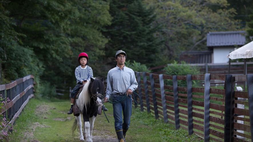 *乗馬体験/スタッフによる引き馬での乗馬体験で安心♪