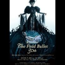 The Field Ballet