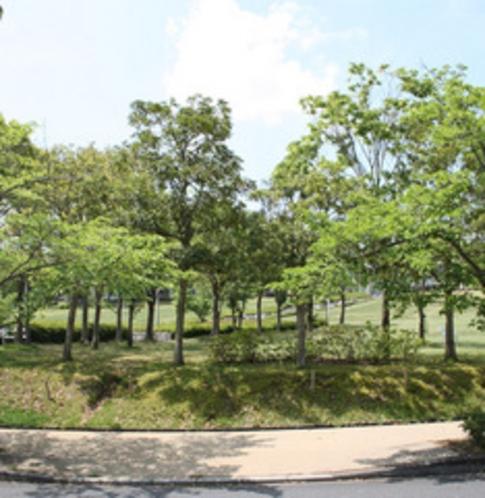 緑に囲まれたバレンタインパーク
