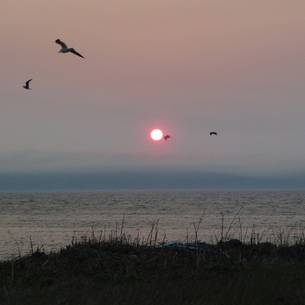 富士岬から礼文島へ沈む夕陽