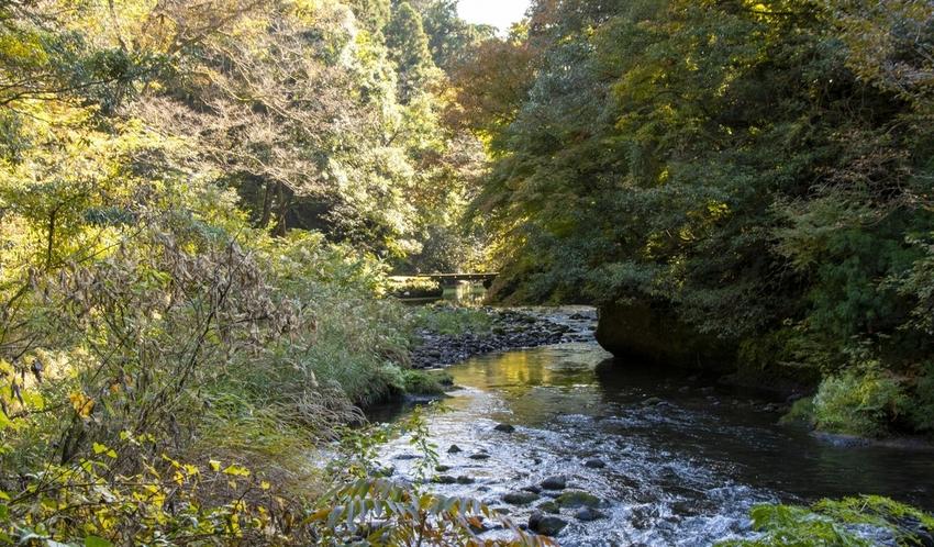 季節ごとに様々な表情を見せてくれる鶴仙渓