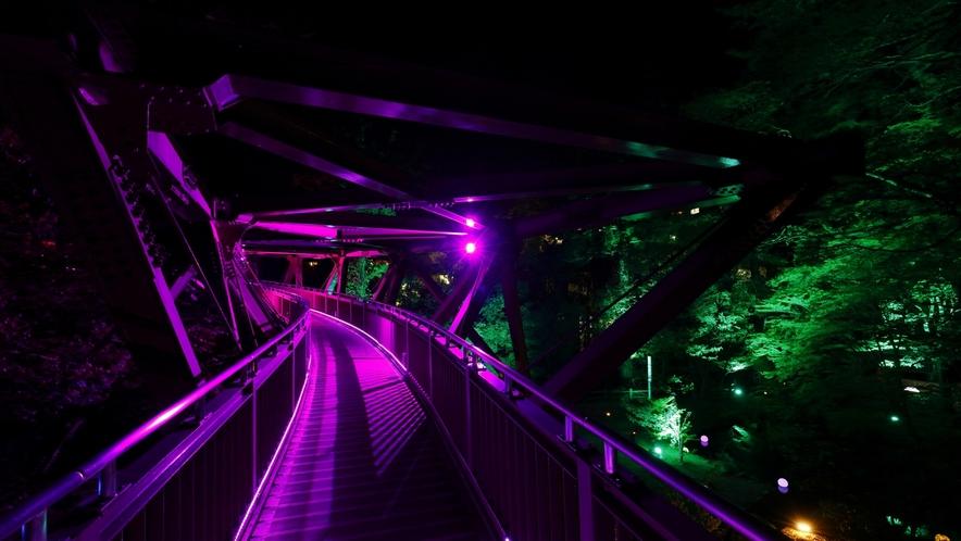 一年を通じて、日没後あやとり橋のライトアップが行われています
