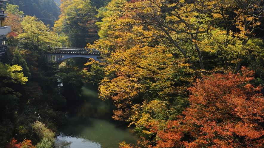 秋は紅葉の鶴仙渓を見に来られる観光客の皆様でにぎわいます