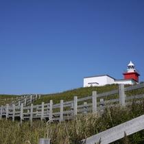 *花咲灯台/こちらの灯台は花咲岬の先端にあります。赤と白に塗られた四角形の建物が目印!