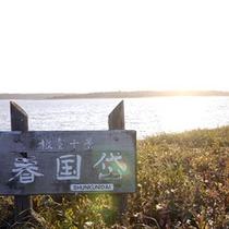 *春国岱/砂州と呼ばれる砂でできた長さ8km、幅1.3kmの島です。