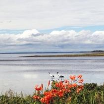 *風連湖/湖には10数本の河川が流入し、独特の景観を見せてくれます。