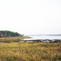 *宿周辺/湖の周辺が湿原や森林、砂丘など多くの自然に囲まれています。