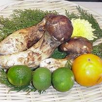*【料理一例】秋の味覚の王様といえばコレ♪松茸を使ったお料理もご用意します。