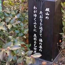 ◇和泉屋の庭