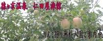 メルマガ用 2011年9月30日配信