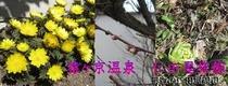 メルマガ用 2010年3月19日配信