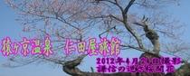 メルマガ用 2012年4月25日配信