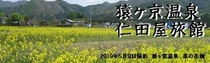 メルマガ用 2010年5月20日配信