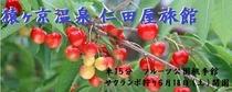 メルマガ用 2011年6月17日配信