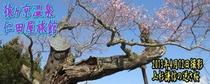 メルマガ用 2013年4月15日配信