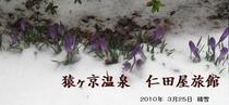 メルマガ用 2010年3月26日配信