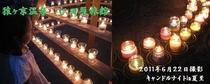メルマガ用 2011年6月24日配信