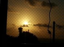 朝陽の見えるお部屋