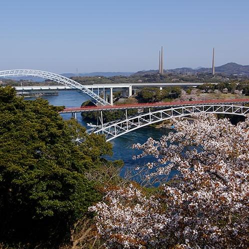 【周辺観光】西海橋(春)