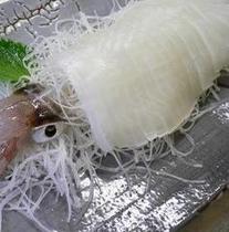 イカの活造り