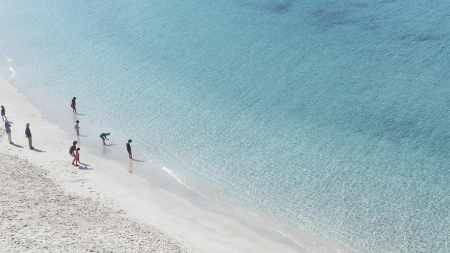 【オーシャンビュー】海の透明度がわかります