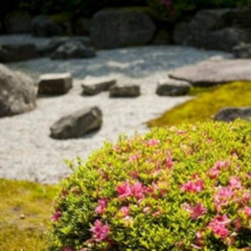 初夏の庭 庭木と石 2012.06撮影
