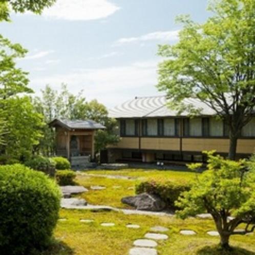 初夏の庭全景2012.06撮影