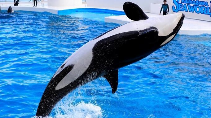 【ウェルカモキャンペーン】4歳以上に2,000円の館内利用券&夜の水族館探検つき
