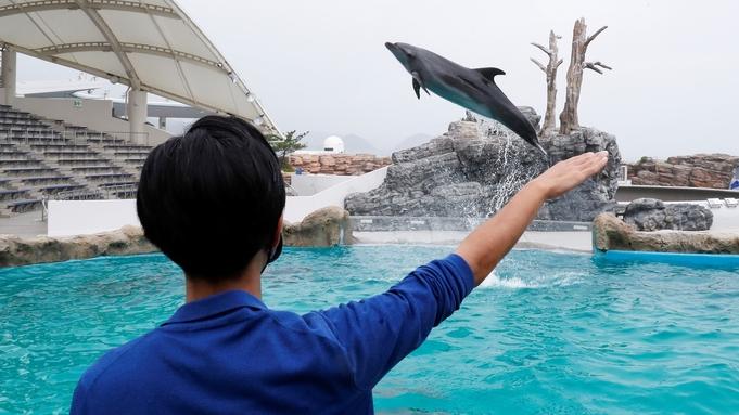 イルカにサインを出してみよう!チェックイン日体験プラン【イルカの海コミュニケーションタイム】