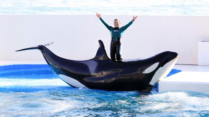 【チェックアウト日に体験】なかなかみられない裏方を見学!水族館まるごとウォッチング体験付