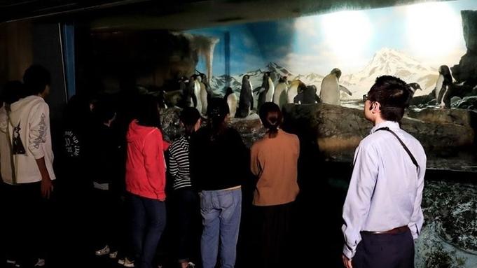 【当日はカモシー休館だからお得】夜&朝の水族館を見学!休館日も楽しんで翌日はカモシーを満喫しよう