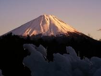 樹氷と夕陽の富士山