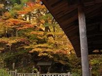 五台橋と紅葉