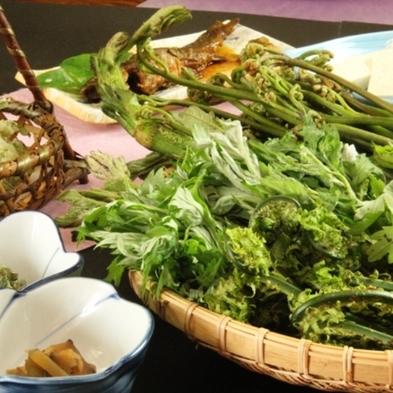 。白山の恵みをお腹いっぱい☆。【期間限定】採れたて山菜とジビエの山食プラン【1泊2食付】