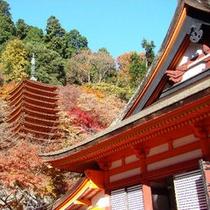 【観光】談山神社(たんざんじんじゃ)紅葉