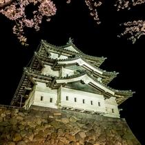 弘前城さくらまつりライトアップ