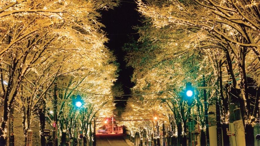 大館冬の道を彩るシャイニングストリート