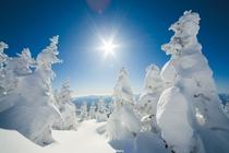 森吉山 樹氷