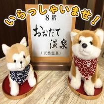 フロントでは僕たち秋田犬がお出迎えするワン!