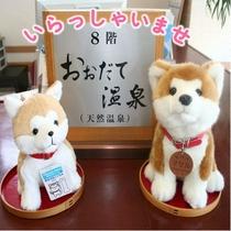 フロントカウンターでは僕達秋田犬がお出迎えするワン♪