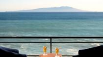 最上階7F/絶景・大島&海を一望出来る客室10畳和室+広縁